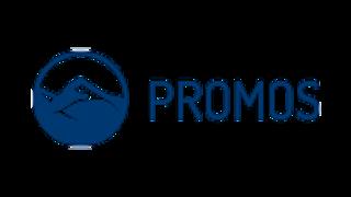 PROMOS consult GmbH